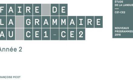Picot CE1-CE2 Année 2