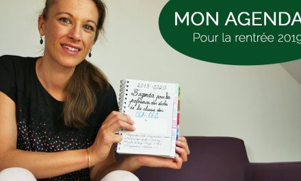 Agenda pour les professeurs des écoles : Mon bullet journal 2019/2020